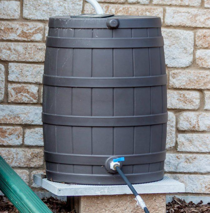 Collect Rain Water in a Rain Barrel