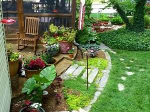 Container Vegetable Gardening Backyard Patio