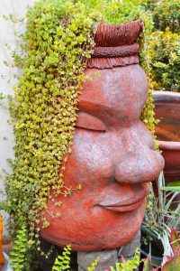 Container Vegetable Gardening Buddha Head Container Garden