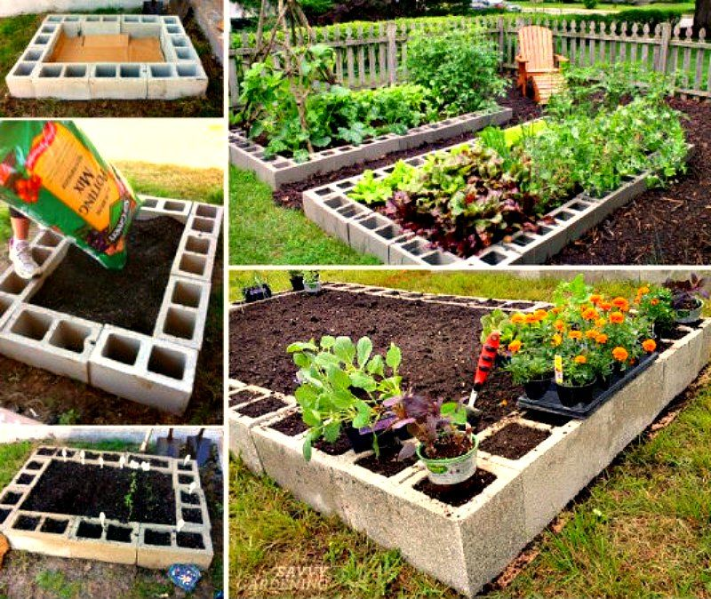 Cinder Block Raised Bed Garden