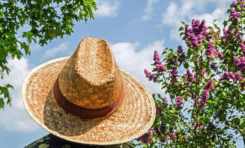 Container Garden with Good Sunhat