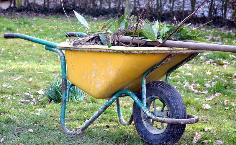 Container Garden Wheelbarrow