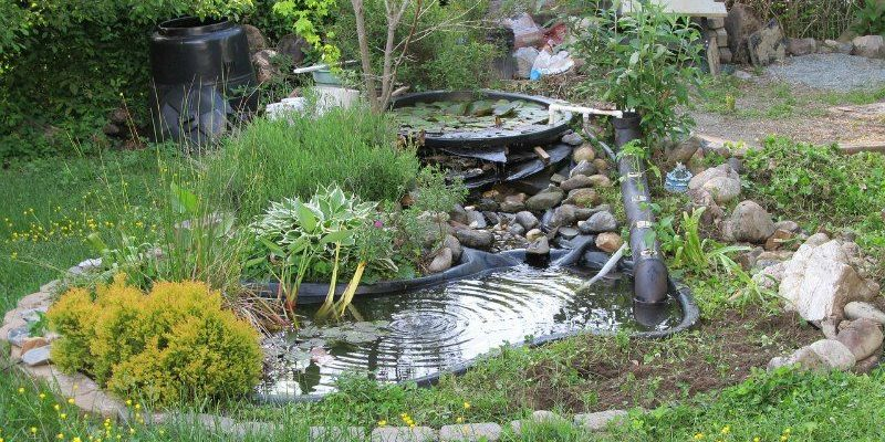 How to build a backyard pond for Building a coy pond
