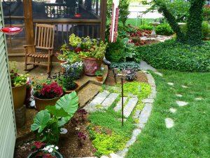 Container Vegetable Gardening Backyard Patio