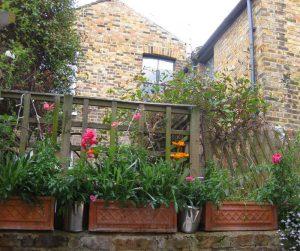 Container Vegetable Garden Patio Garden