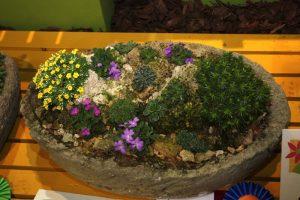 Container Vegetable Gardening Mini Stone Garden Container Pot