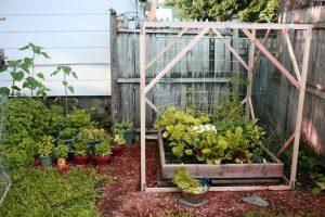 Container Vegetable Gardening Raised Bed Trellis
