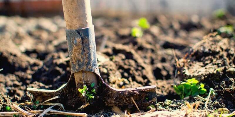 Start Garden Turn Soil